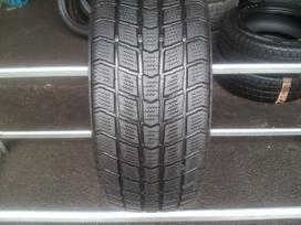 Roadstone Euro-Win 555 apie 7,5mm