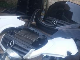Mercedes-Benz Sprinter316CDI, pasažieru