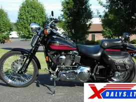 Harley-Davidson Bad Boy, Čioperiai / kruizeriai / custom