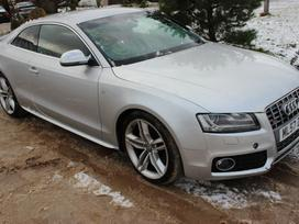 Audi S5 dalimis. Caua