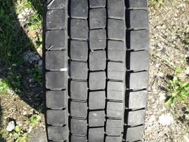 Dunlop SP444