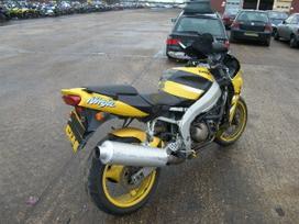 Kawasaki ZX/ZX-R (Ninja)