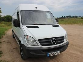 Mercedes-Benz Sprinter, krovininiai mikroautobusai
