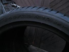Pirelli 5mm.  P Zero, vasarinės 255/35 R19
