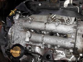 Opel Combo variklio detalės